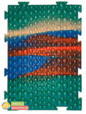 Ракушки - Морское дно